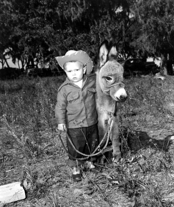 Boy with sicilian donkey